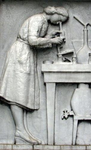 La dame au microscope.jpg